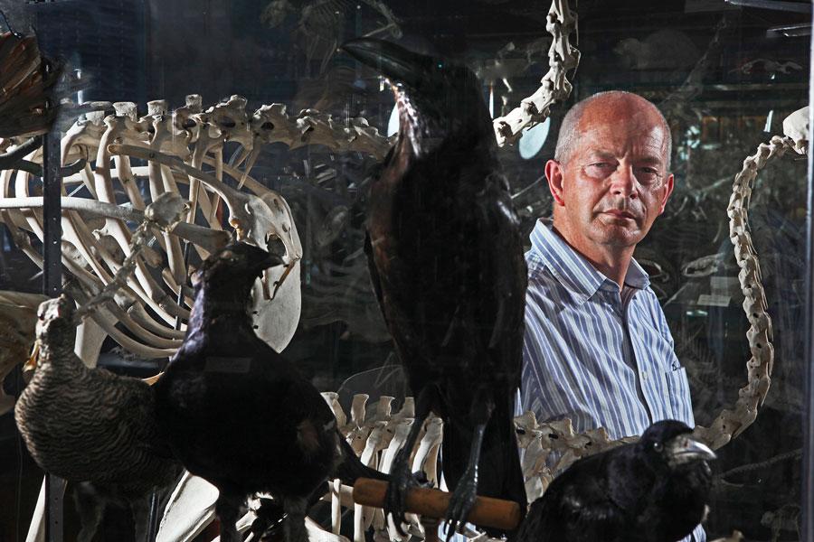 Professor Tim Birkhead
